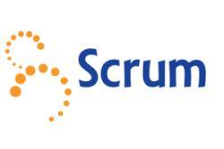 Professional Scrum Developer